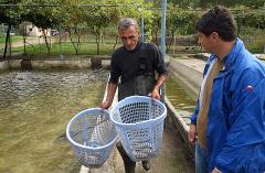 Fischzuchtstation